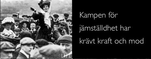 """Från S-kvinnors och Tvärdrag seminarium """"Feministisk reformslam"""", Bildspel Eva Sommestad Holten"""